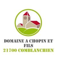photo Domaine Chopin et Fils Bourgogne